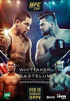 UFC 234 Fighters Exit LOWER Ticket